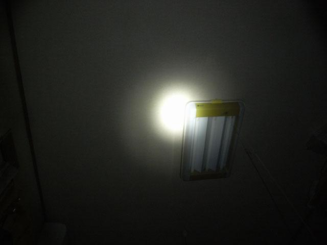 Sidewinderlightup