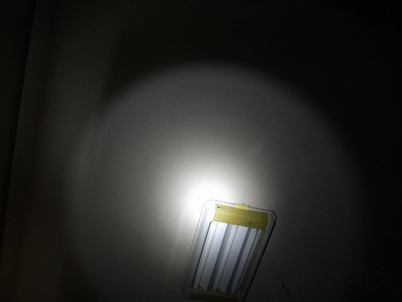 Nitecorelight
